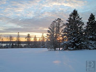 WP-Snow-Brooklin-2-032416-JS