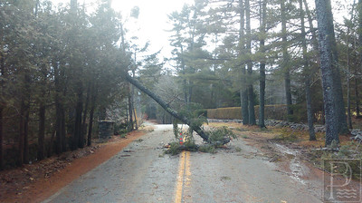WP-Parker-Point-Road-Damage-011416
