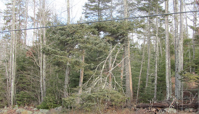 WP-storm-damage-bluehill-powerlines-horizontal-011416-AB