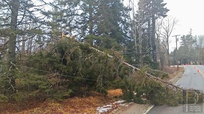 WP-Brooklin-Storm-Damage-JS