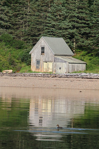 IA-isle-au-haut-scenics-reflection-with-duck-080416-AB