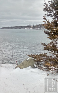 IA-Snow-Deer-Isle-Northwest-Harbor-1-021116-JS