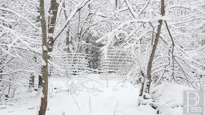WP-Snow-Feb-5-fence-021116-FD