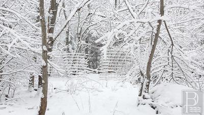 WP-Snow-Feb-5-fence-021116-FD