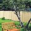 IA-New-park-pics-bench-and-trees-072816-ML