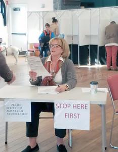 WP-BH-Voting-Mascheutz-111016-FD