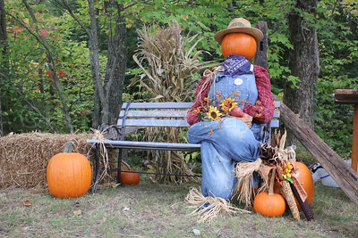 WP-Surry-fall-festival-pumpkin-scarecrow--100616-AB