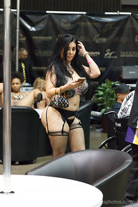 Adultcon_Dec_2016_IMG_1115_RR
