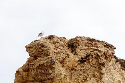 El_Matador_Beach_IMG_0013