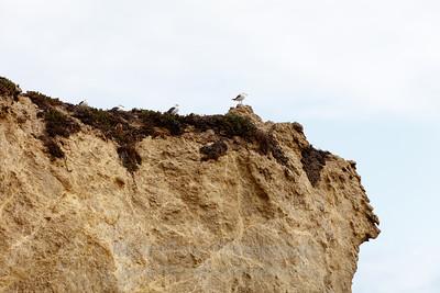 El_Matador_Beach_IMG_0140