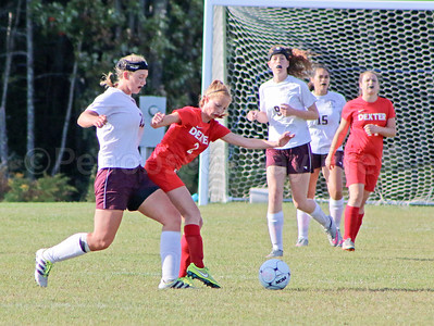 Morgan Dauk fights for the goal against Dexter. Photo by Anne Berleant