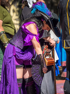 Kansas City Renaissance Faire