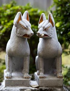 Foxes guarding the Yojiro-Inari-Jinja shrine in Senshu park, Akita.