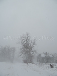 CP-blizzard-house-tree-021617-AB