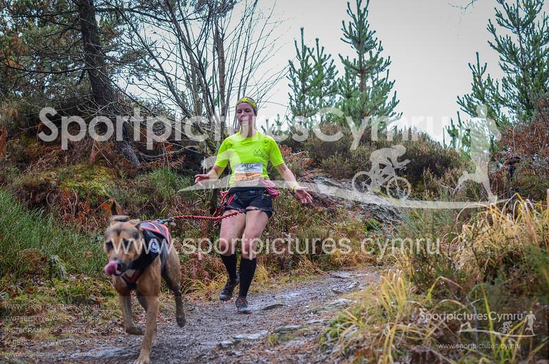 Betws Trail Challenge - 1010-DSC_6898