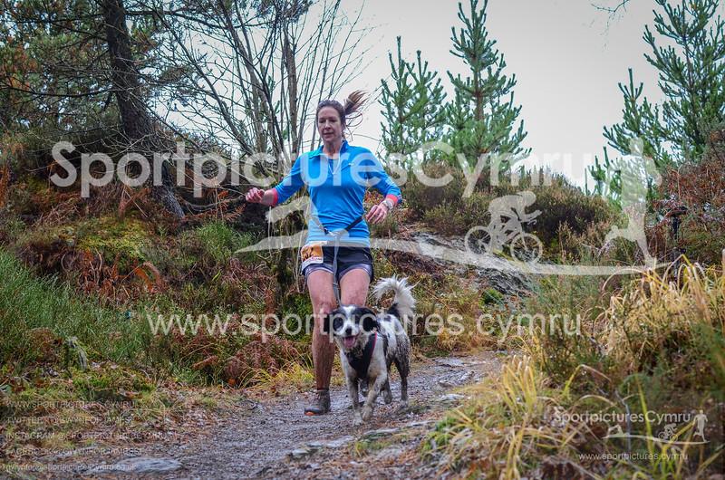 Betws Trail Challenge - 1017-DSC_6905