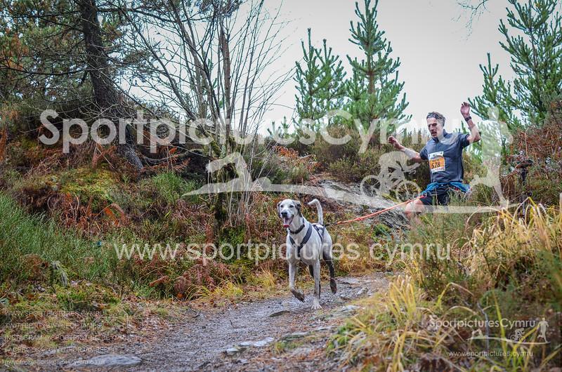 Betws Trail Challenge - 1020-DSC_6908
