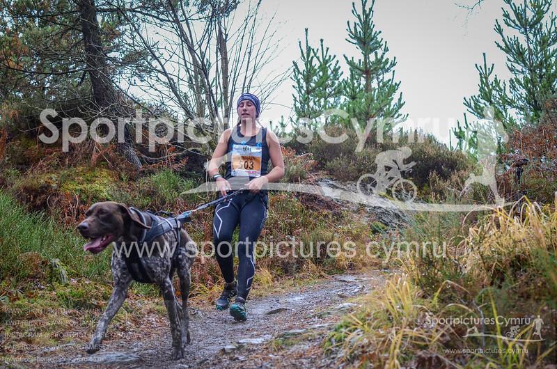 Betws Trail Challenge - 1006-DSC_6894