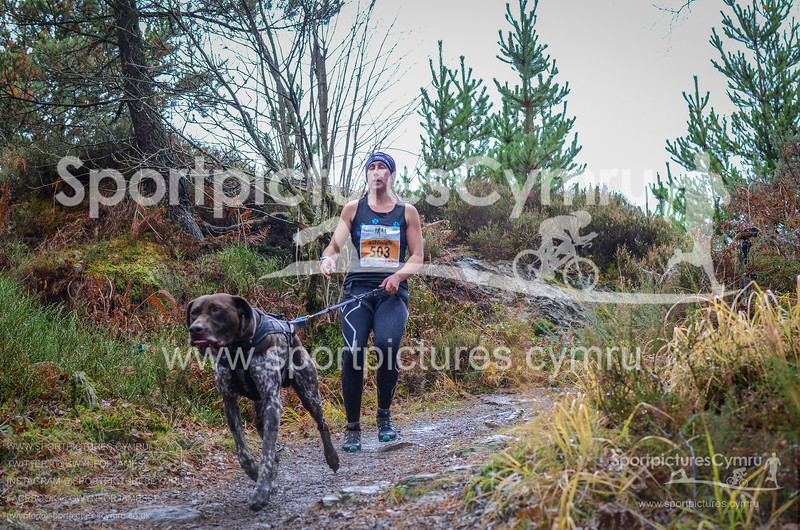 Betws Trail Challenge - 1005-DSC_6893