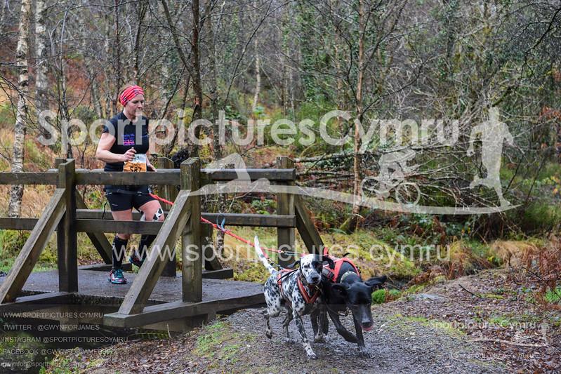 Betws Trail Challenge - 1013-DSC_6971