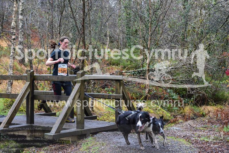 Betws Trail Challenge - 1003-DSC_6957