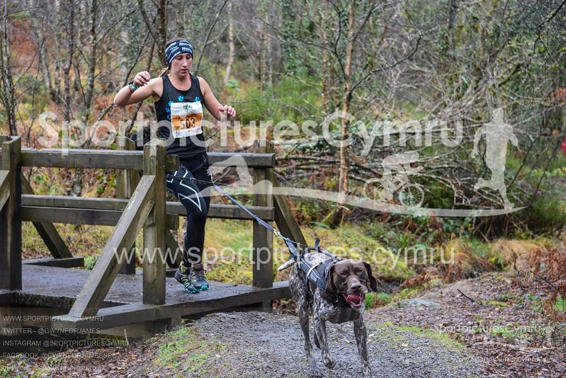 Betws Trail Challenge - 1011-DSC_6969