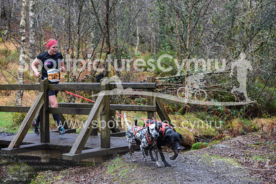 Betws Trail Challenge - 1012-DSC_6970