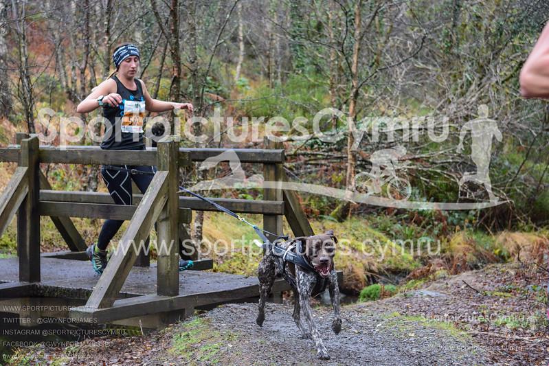 Betws Trail Challenge - 1010-DSC_6968