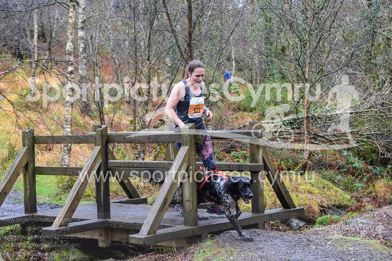 Betws Trail Challenge - 1023-DSC_6981