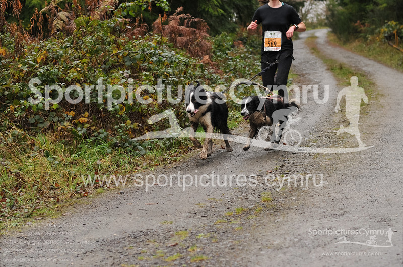 Betws Trail Challenge - 1008-D30_5420