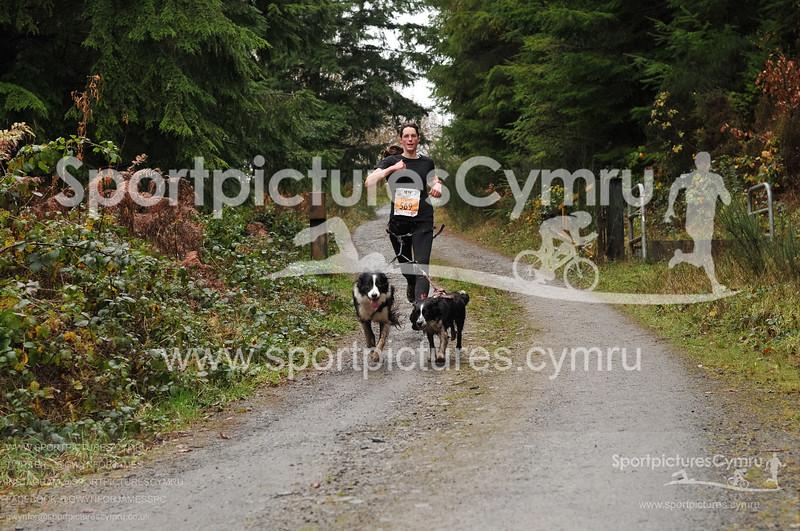 Betws Trail Challenge - 1006-D30_5417