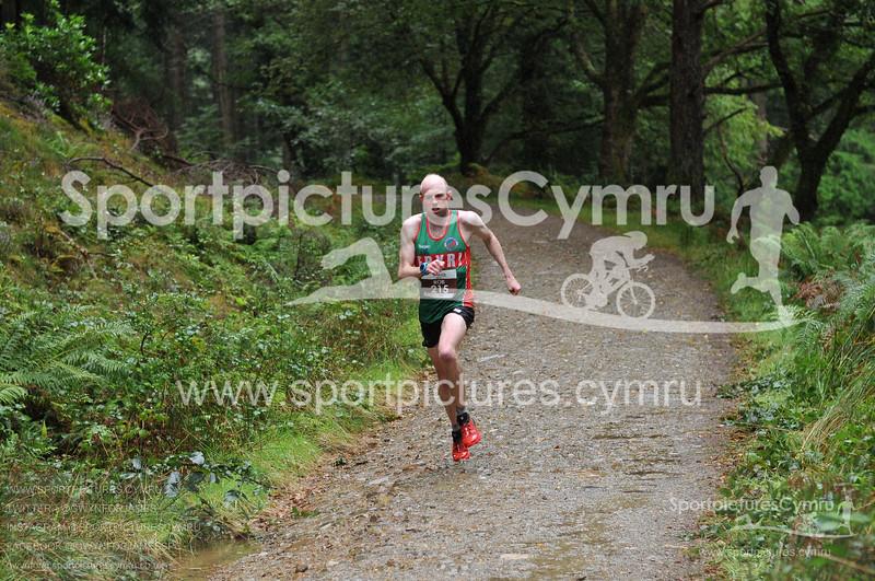 Trail 10K Wales-1000-D30_2955- (11-31-14)-T10215