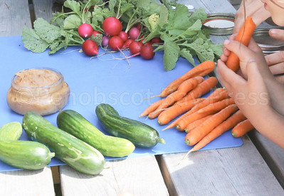 WP_BES_gardening_veggies_072717_ML