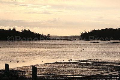 WP_fall_scenics_blue_hill_bay_two_102215_AB