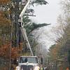 AP_line_repair_EBH_Road_vert_110917_AB