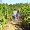 CP_Pen_students_corn_maze_walking_in_100517_ML