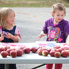 WP_Sedgwick_apple_fest_prints_2__100517_AB