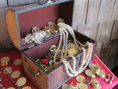 CP_Pen_pirate_ship_treasure_102617_ML
