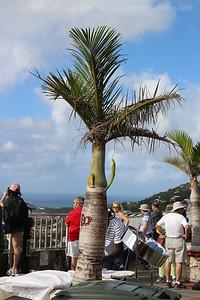 Caribbean_Cruise_2017_0047_RR