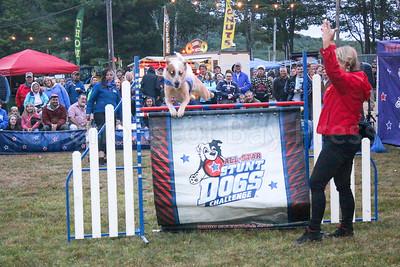 WP_BH_Fair_stunt_dogs_Toby_090717_ML