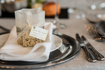 CPASTOR - wedding photography - bridal shower - V