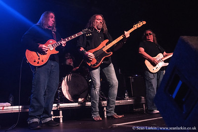 The Kentucky Headhunters