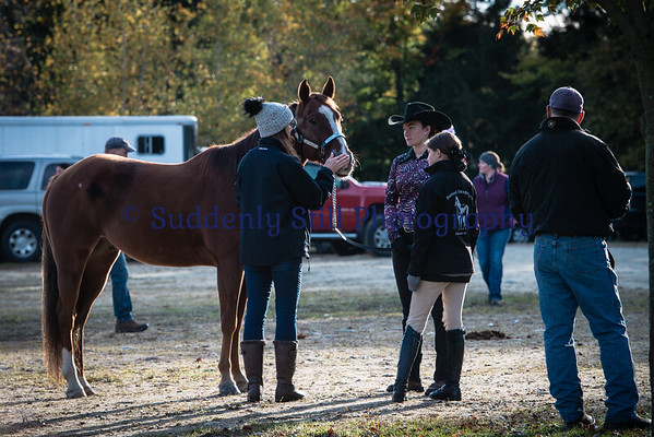 Oakrise Horse Farm 10-14