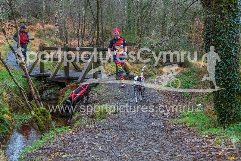 Betws Trail Challenge -3021 -DSC_9238