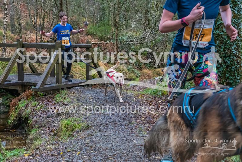 Betws Trail Challenge -3010 -DSC_9227