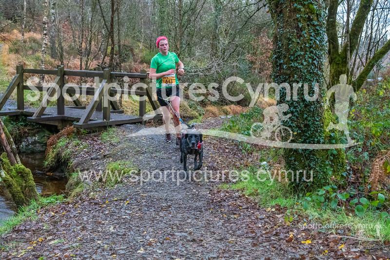 Betws Trail Challenge -3023 -DSC_9246