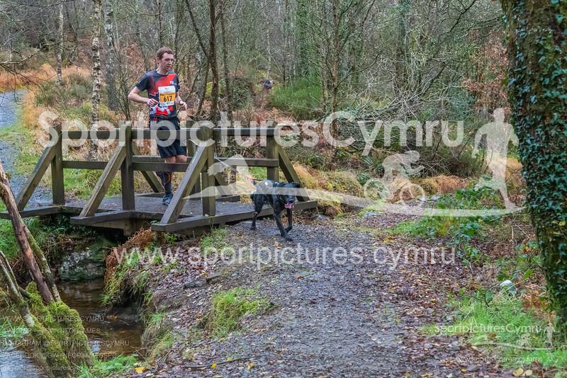 Betws Trail Challenge -3013 -DSC_9230