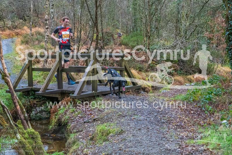 Betws Trail Challenge -3012 -DSC_9229