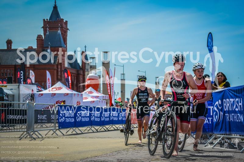Cardiff Triathlon -3014-DSC_5733-(11-25-50)