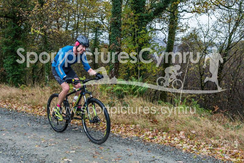 SportpicturesCymru - 1007- DSC_7381
